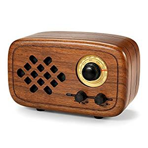 Top 15 Best Bluetooth Speakers with Radio in 2019   TECHSOUNDED